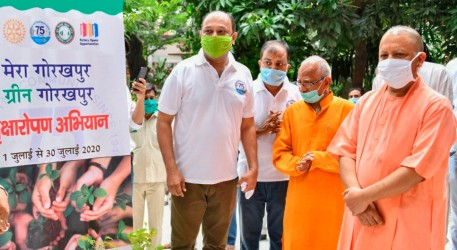 Rotary paints India green with tree plantation drives